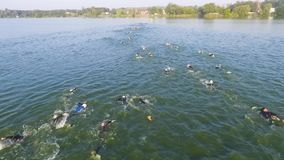 Aerial view of athlete swimmers swimming race on river slow motion. Aerial view of athlete swimmers swimming race in river slow motion. open water triathlon long stock video footage