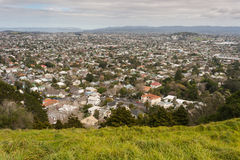 Aerial view of Auckland suburb Royalty Free Stock Photo