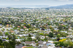 Aerial view of Auckland suburb, New Zealand Royalty Free Stock Photography