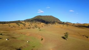 Aerial view of Australian cattle herd. On the country farm, Queensland stock footage