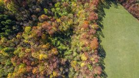 Aerial view of autumn forest. Trees Royalty Free Stock Photography
