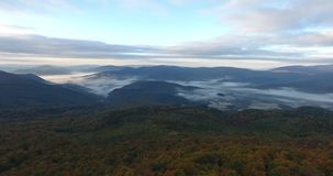 Aerial view of autumn mountain forest in fog stock video footage