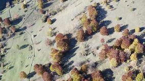 Aerial view of autumn pasture with haystacks stock video footage