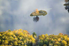Aerial view of autumn tree on pond with reflection near Sanford, Maine Stock Photo