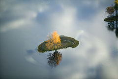 Aerial view of autumn tree on pond with reflection near Sanford, Maine Stock Photos