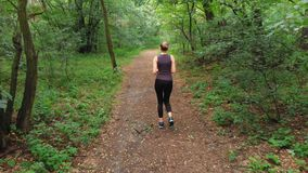 Aerial view from the Back to the Young Woman who Runs through Pine Tee Forest Path stock footage