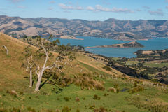 Aerial view of Banks Peninsula Royalty Free Stock Photo