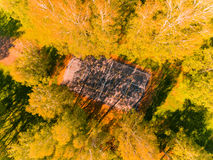Aerial view of basketball field on day time in forest. Above with drone. Stock Photos