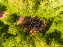Aerial view of basketball field on day time in forest. Above with drone. Royalty Free Stock Image