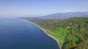 Aerial view of Batumi botanical garden stock video