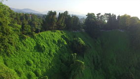 Aerial view of Batumi botanical garden stock video footage