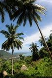 Aerial view of a beach Lamai Stock Photo