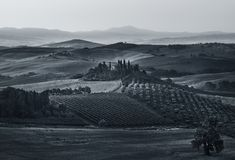 AERIAL VIEW OF BEAUTIFUL LONELY VILLA IN SAN QUIRICO d`ORCIA, TUSCANY, ITALY, EUROPE, NEAR PIENZA. SUNRISE. BLACK AND WHITE. royalty free stock photography