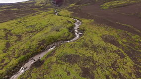 Aerial view. Beautiful mountain creek in the green summer forest. Mountain stream in the forest stock video