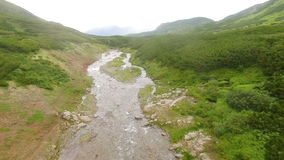 Aerial view. Beautiful mountain creek in the green summer forest. Mountain stream in the forest. A creek in a green forest in the mountains. Creek flowing into stock video footage