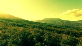 Aerial view on the beautiful mountain landscape, sunshine in forest and cloudy sky. stock footage