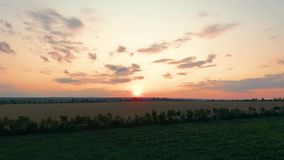 Aerial view. Beautiful nature, view on rural countryside landscape and fields, shining sun sunset, sky, horizon. Aerial view. Beautiful nature, view on rural stock video footage