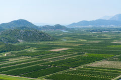 Aerial view of beautiful Neretva valley in southern Croatia. Royalty Free Stock Images