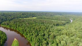 Aerial view of beautiful river across the forest.  Stock Images