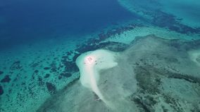 Aerial view of beautiful sand tropical island. With white sand beach and tourists. White sand island. Seascape: ocean and beautiful beach paradise. Zanzibar stock video footage