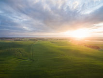 Aerial view of a beautiful sunset over green corn fields - agricultural fields Stock Photos