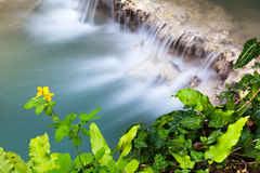 Aerial view of a beautiful waterfall Stock Photos
