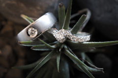 Aerial view of beautiful  wedding rings with decorations Royalty Free Stock Photo