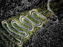 Aerial view of a bent road in the forest Stock Photos