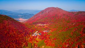 Aerial view of Beomeosa temple in Busan South korea.Image consists of temple located between the mountain covered with colorful stock photography