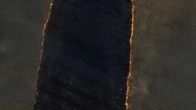 Aerial view on big fire on the large wheat field. Fire on the wheat field. Forest and grassland fires completely destroy. The fields and steppes during a severe stock video footage