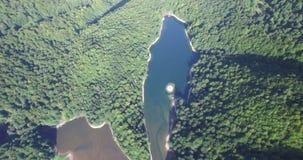 Aerial view of Biogradsko Lake, Biogradska Gora national park in Montenegro. Aerial view of Biogradsko Lake, Biogradska Gora national park, Montenegro stock video