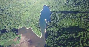 Aerial view of Biogradsko Lake, Biogradska Gora national park in Montenegro. Aerial view of Biogradsko Lake, Biogradska Gora national park, Montenegro stock footage