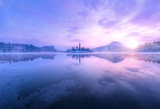 Aerial view of Bled lake in sunrise light Royalty Free Stock Photography