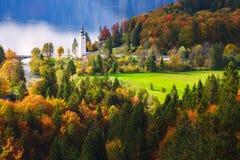 Aerial view of Bohinj lake in Julian Alps, Slovenia Royalty Free Stock Photography