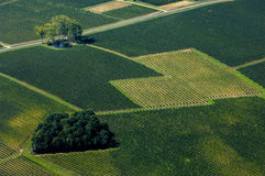 Aerial view of Bordeaux vineyard, France Royalty Free Stock Photography