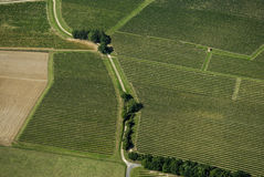 Aerial view of Bordeaux vineyard, France Stock Photo