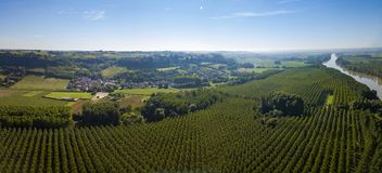 Aerial view, Bordeaux vineyard, landscape vineyard south west of france royalty free stock images
