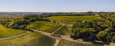 Aerial View, Bordeaux vineyards, Saint-Emilion, Gironde department, France stock photography