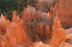 Aerial view of Bryce Canyon National Park, UT Royalty Free Stock Images