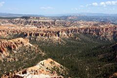 Aerial View of Bryce Canyon. Aerial view of a Pine tree valley in Bryce Canyon royalty free stock image