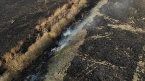 Aerial view of burned field, burning of dry grass. Fly back and tilt technique. Harm the environment