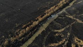 Aerial view of burned field, fly forward. Disaster and emergency events, atmospheric pollution stock video