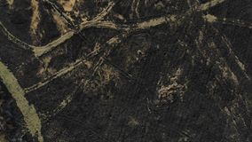 Aerial view of burned field. Top view with climb up and pan technique stock footage