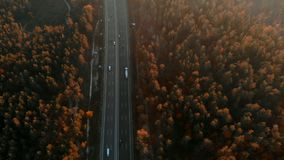 Aerial view of busy highway surrounded by forest stock video footage