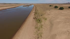 Aerial view of the Caledon river - South Africa stock video