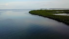 Aerial View of Calm Lagoon and Mangroves in Caribbean. Aerial view of mangrove islands and the calm lagoon inside Turneffe Atoll in Belize. The area supports a stock video