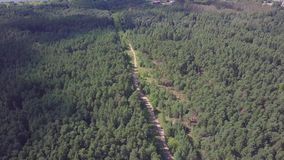 Aerial view camera from green forest of dense mixed tree tops of pine trees and birches. Clip. Aerial view flying over. Old patched two lane forest road with stock video