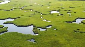 Aerial View of Cape Cod Salt Marsh stock footage