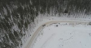 Aerial view of car driving among the winter forest covered with snow. Car driving on winter country road in snowy forest. Aerial footage stock footage