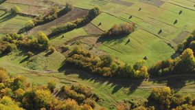 Green fields on the slope in the carpathian mountains. Hay harvest. Aerial view of the carpathian mountains in autumn. Small village. Beautiful orange hills and stock video